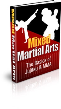 Mixed Martial Arts: The Basics of Jujitsu & MMA